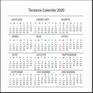 Printable Tanzania 2020 Calendar